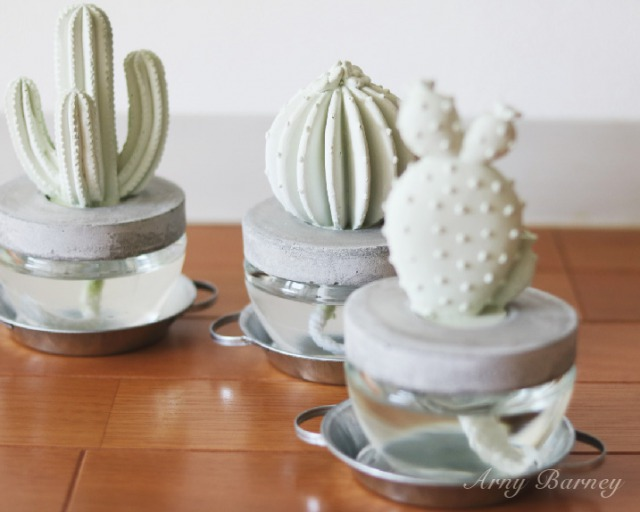 s_cactus_fg02