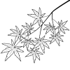 1538206809